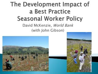 The Development Impact of  a Best Practice Seasonal Worker Policy
