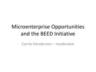 Microenterprise Opportunities and the BEED Initiative