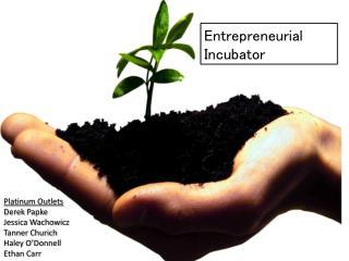 Entrepreneurial Incubator