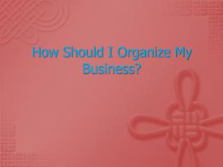 How Should I Organize My Business?