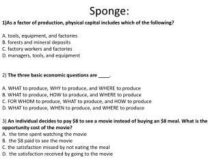Sponge: