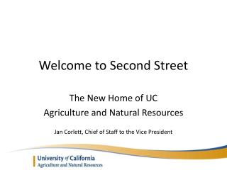 Welcome to Second Street
