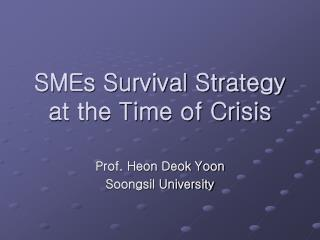 SMEs Survival Strategy at the Time of Crisis