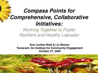 Compass Points for Comprehensive, Collaborative Initiatives: Communities
