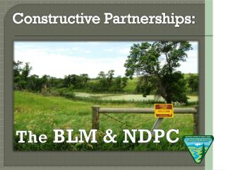 Constructive Partnerships: