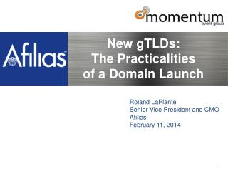 New gTLDs:  The  Practicalities  of a  Domain  Launch