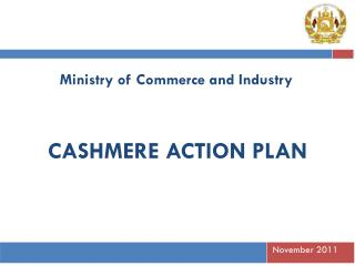 CASHMERE ACTION PLAN