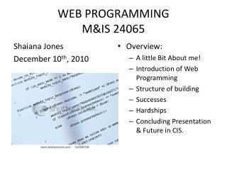 WEB PROGRAMMING M&IS 24065