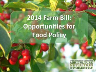2014 Farm Bill:  Opportunities for  Food Policy