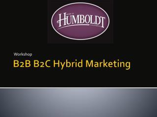 B2B B2C Hybrid Marketing