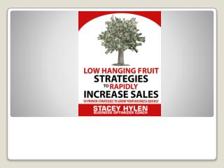 Low Hanging Fruit Strategies to Rapidly Increase Sales with Business Optimizer Coach Stacey Hylen