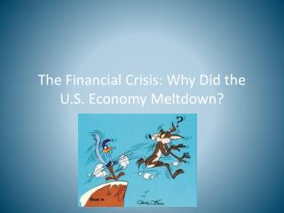 The Financial Crisis: Why Did the U.S. Economy Meltdown?