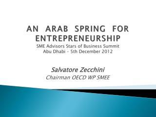 AN  ARAB  SPRING  FOR ENTREPRENEURSHIP SME Advisors Stars of Business Summit Abu Dhabi – 5th December 2012