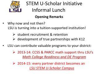 STEM U-Scholar Initiative Informal  Lunch