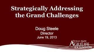 Doug Steele Director June 19, 2013