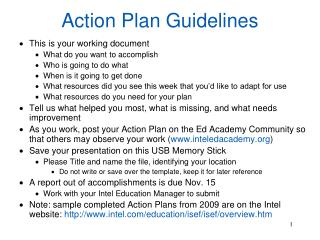 Action Plan Guidelines