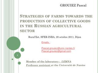 Strategies of farms towards the production of collective goods in the Russian agricultural sector