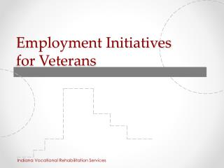 Employment Initiatives  for Veterans