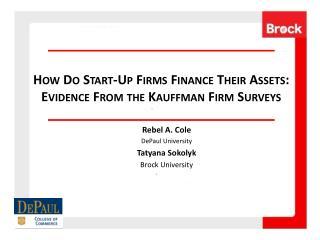 How Do Start-Up Firms Finance Their Assets:  Evidence From the Kauffman Firm Surveys