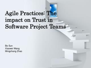 Agile Practices: The impact on Trust in Software Project Teams