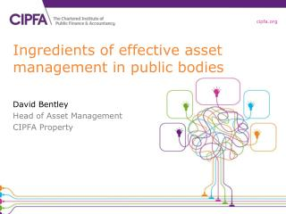 Ingredients of effective asset management in public bodies