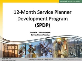 12-Month Service Planner  Development Program ( SPDP )
