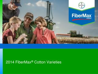 FiberMax/Stoneville Agronomic Services