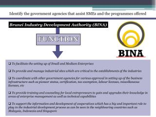 Identify the government agencies that assist SMEs and the programmes offered