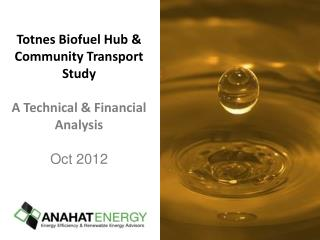 Totnes  Biofuel  Hub & Community Transport  Study A Technical & Financial Analysis Oct 2012