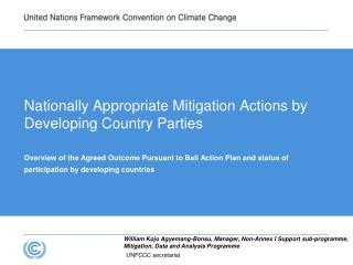 Nationally Appropriate Mitigation Actions by Developing Country Parties
