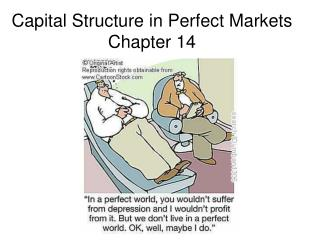 Capital Structure in Perfect Markets Chapter 14
