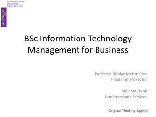 BSc Information Technology Management for Business
