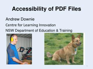 Accessibility of PDF Files