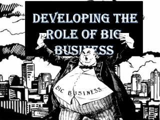 Developing The Role of Big Business