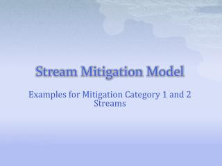 Stream Mitigation Model