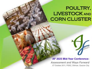 POULTRY,  LIVESTOCK  AND  CORN CLUSTER