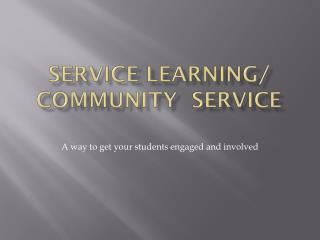 SERVICE LEARNING/ COMMUNITY  SERVICE