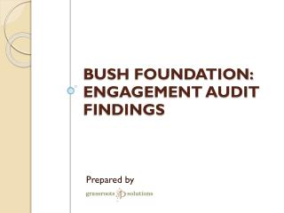 Bush Foundation: Engagement audit findings