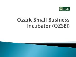 Ozark Small Business Incubator (OZSBI)