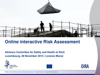 Online interactive Risk Assessment