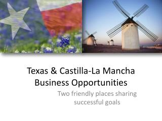 Texas & Castilla-La Mancha Business  Opportunities