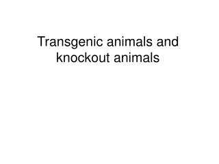 transgenic animals and knockout animals
