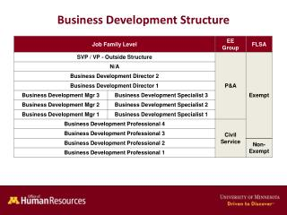 Business Development Structure