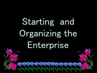 Starting  and Organizing the  Enterprise