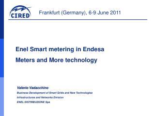Enel Smart  metering  in  Endesa Meters  and More technology