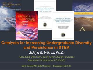 Catalysts for Increasing Undergraduate Diversity and Persistence in STEM