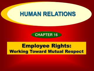 employee rights:  working toward mutual respect