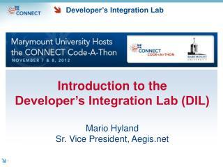 Developer's Integration Lab