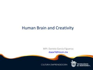 Human Brain and Creativity