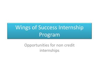 Wings of Success Internship Program